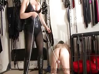 Mistress Alexandra ball busting punishment